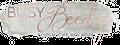 Busy Beedz Logo
