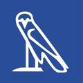 Cairo Rings Logo