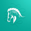 wwwcaracolsilver Logo
