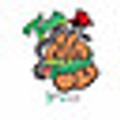 CarolinasCannabisConvention Logo