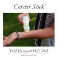 carrierstick.com Logo