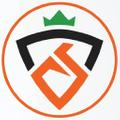 Carrot Stick Sports USA Logo