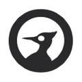 CarveOn Logo