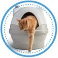 Cat Genie logo
