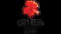 Cayena Boutique Logo