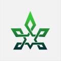 CBDplaza logo