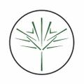 Ceiba Logo