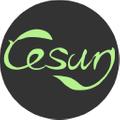 cesun.tech Logo