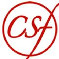 Chantalstylz Logo