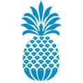 CJ LAING Logo