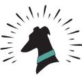 classichoundcollarco Logo