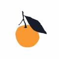 Clementine Kids Logo