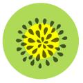 Coco and Kiwi Logo