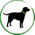 coloradodog Logo