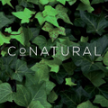 Conatural UK logo