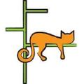 Contempocat Logo