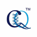 corsetsqueen-uk Logo