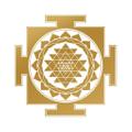 Cosmic Insights logo