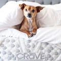 Crave Mattress Logo