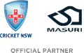 Cricket NSW Helmet Shop Logo