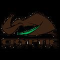 crypticcoatings Logo