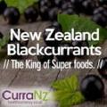 CurraNZ - New Zealand Logo