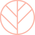 CZND Logo