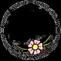 Daisy & Aster logo