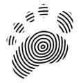Dance Paws Logo