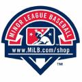 Danville Braves Official Store logo