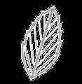 Davids Natural Toothpaste Logo