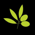 Della Terra Logo
