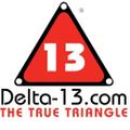 Delta 13 Logo