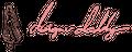 Designer Daddy Products Logo