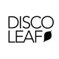 Disco Leaf Vintage Logo