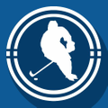 Discount Hockey Logo