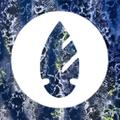 Dona Jo Logo