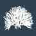Original art by Kerri Shipp Logo