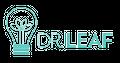 Dr Leaf Logo