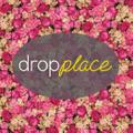 DropPlace Logo