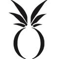Dudley Stephens Logo