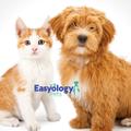 Easyology Logo