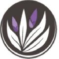 Ebambu – Ebambu.ca Logo