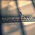 eBeanstalk Logo