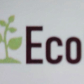 EcoStrength Logo