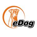 eDog Australia Logo