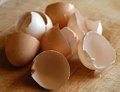Eggshells Kitchen Logo