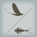 Emerger Fly Fishing Logo