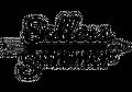 Endless Summer NZ Logo