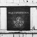 Equus Now! Logo